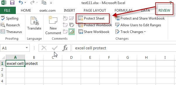 excel cells protectio21