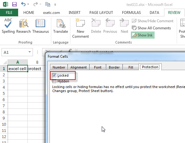 excel cells protection1