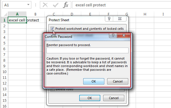 excel cells protection4
