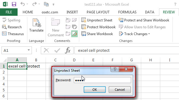 excel cells protection5