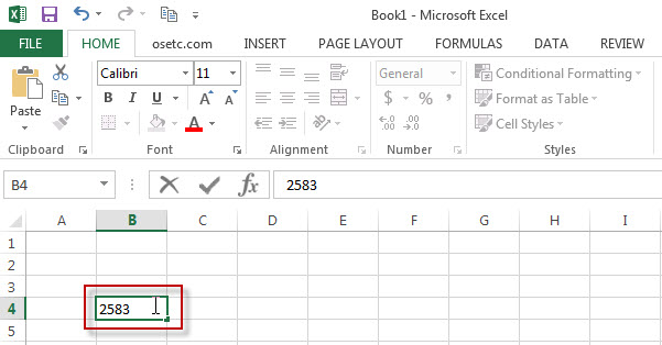 excel cells2