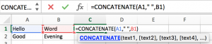 How to Concatenate Cells 2