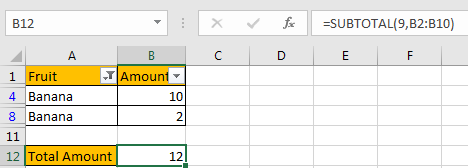 How to Only Sum Visible CellsRows in a Filtered List7