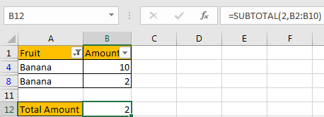 How to Only Sum Visible CellsRows in a Filtered List9